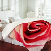 《Shannon Clark 》2012秋冬床上用品系列Lookbook