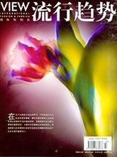 《View-国际纺织品流行趋势》中国国际纺织品杂志2013年春夏季号(中国#145)