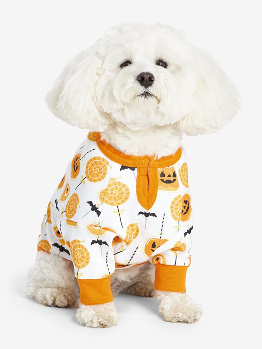 《The Company Store》2021秋冬万圣节主题宠物用品系列Lookbook